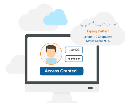 Access Granted on computer graphic